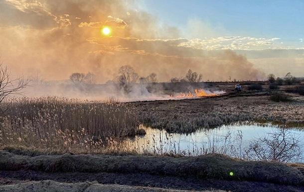 Пожежі біля ЧАЕС: наскільки це небезпечно?