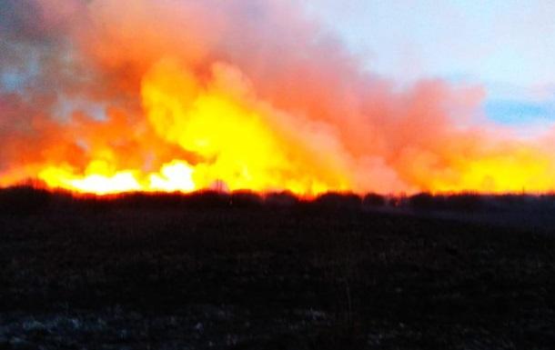 У природному парку на Рівненщині за тиждень вигоріли 290 гектарів