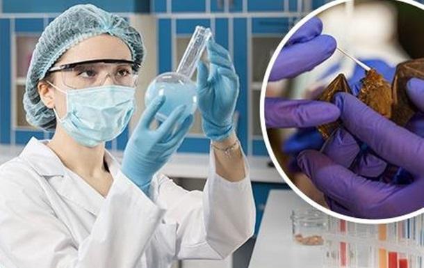 Коронавирус-19: в Украине продолжается фаза быстрого роста