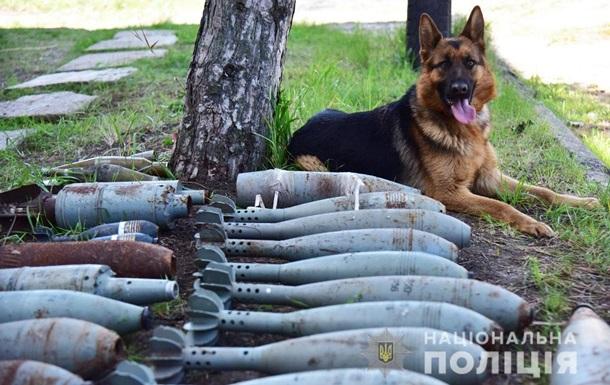 На Донбасі виявили схрон з мінами і снарядами