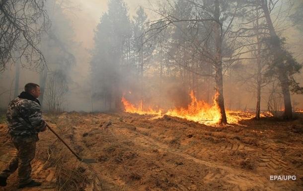 Слідство перевіряє зв язок між підпалами лісів у різних областях