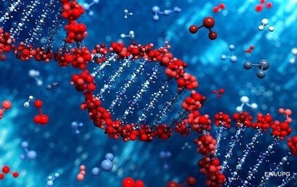 Генетики рассказали о предках европейцев