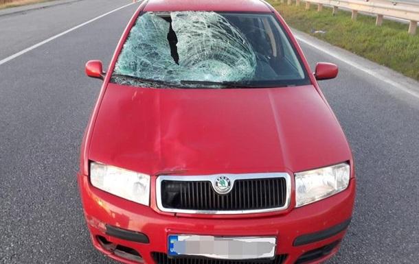 ДТП на Винниччине: коп насмерть сбил пешехода
