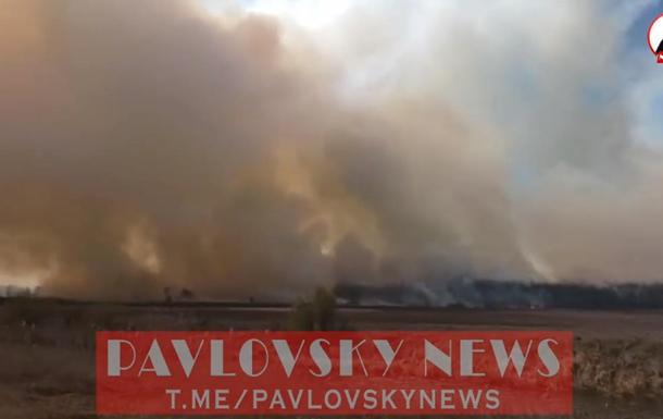 За 50 кілометрів від Києва палає ліс