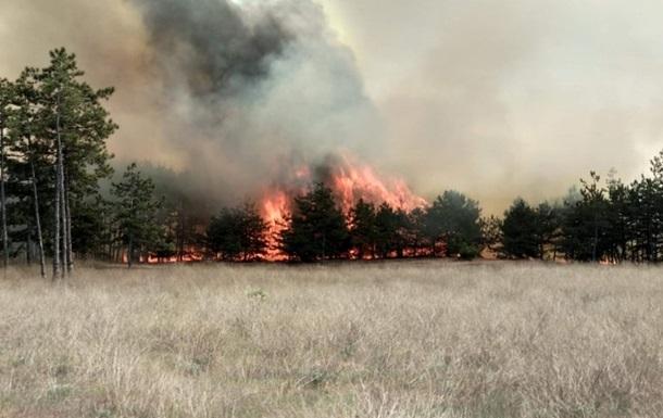 На Житомирщині чотири нові лісові пожежі