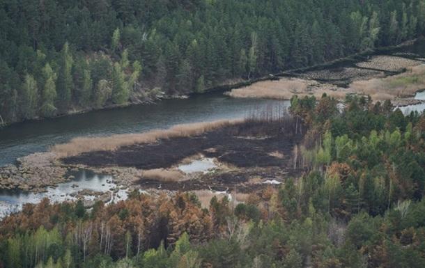 Вогонь знищив близько 5% Чорнобильського заповідника
