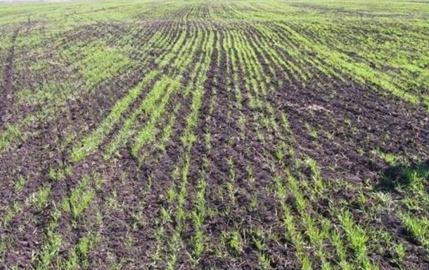 Проблемы украинских аграриев как зеркало нашей экономики