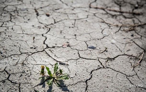 Засуха и голод. Что ждет мир после коронавируса