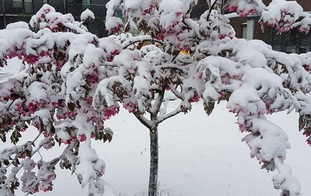 Восточную Европу засыпало снегом