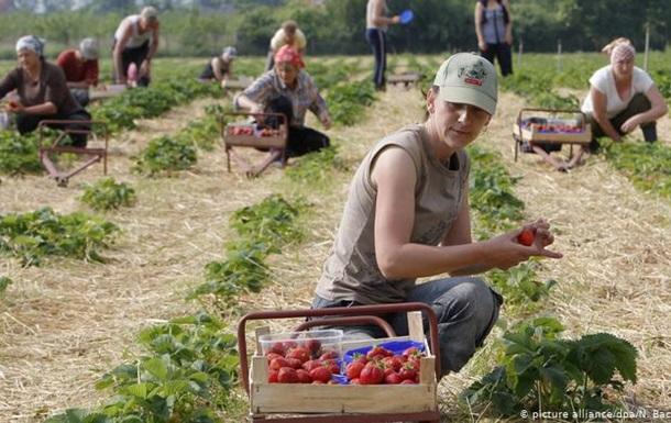 Не дочекавшись чартерів: як українські заробітчани їдуть до ЄС