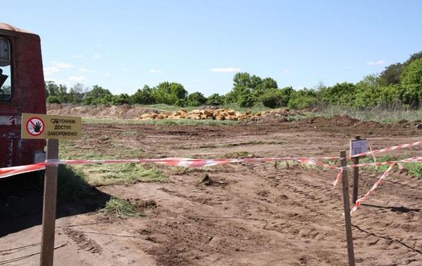 На Полтавщине птицефабрика не справляется с утилизацией 600 тысяч кур