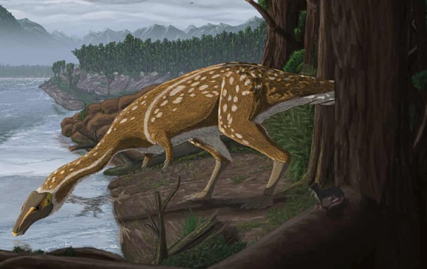 Археологи нашли останки редчайшего динозавра
