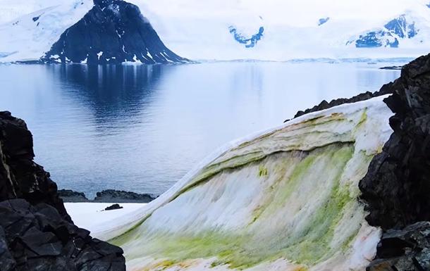 В Антарктиді з явився  зелений сніг