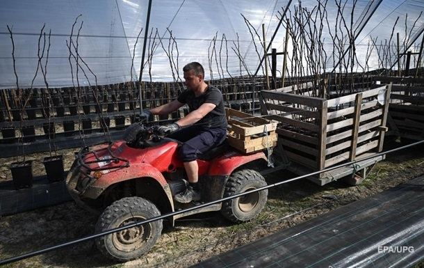 В правительстве Эстонии выступили против приезда украинских заробитчан