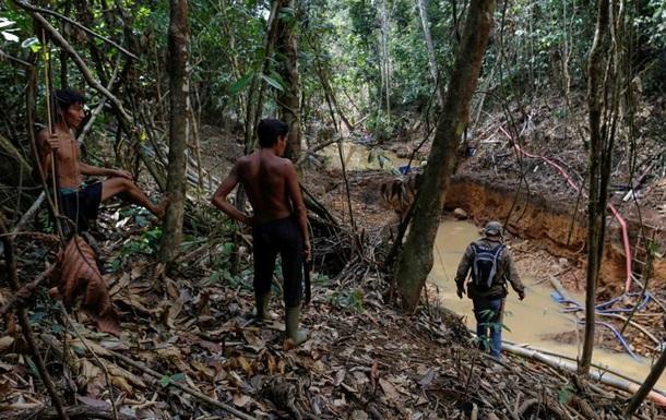 Темпи знищення тропічних лісів зросли більш ніж удвічі