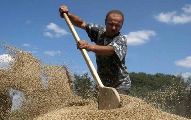 Відкрито справу щодо крадіжки зерна на 800 мільйонів гривень