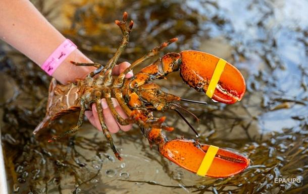 Трамп пригрозил ЕС и Китаю пошлинами из-за омаров