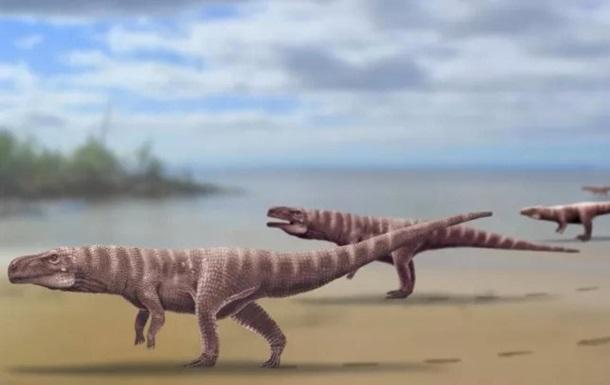 Найдены следы двуногого предка крокодилов