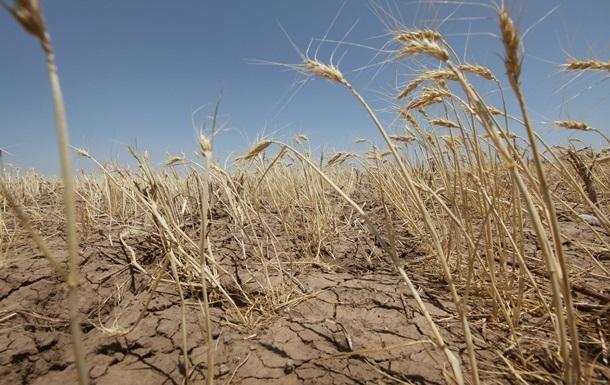 В СНБО опасаются засухи в Украине