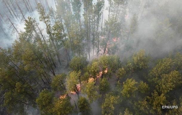 В Чернобыльской зоне новый лесной пожар