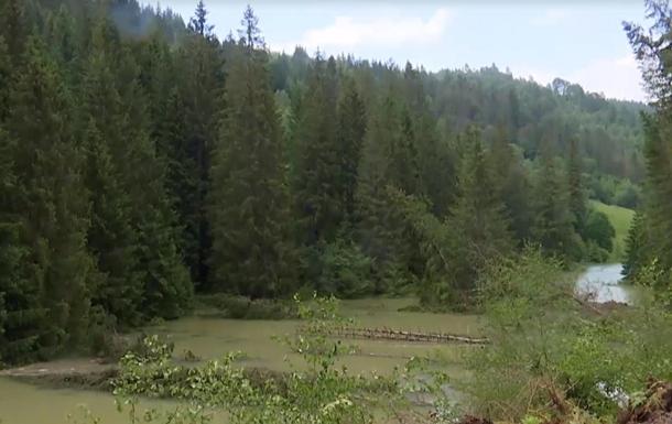 На Прикарпатье селевой поток может снести село