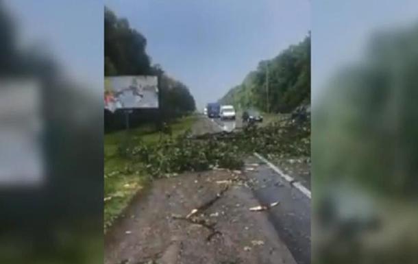 Ураган свалил дерево на трассу Киев-Чоп