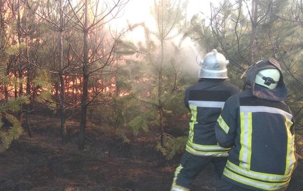 У Луганській області спалахнули пожежі у двох лісництвах
