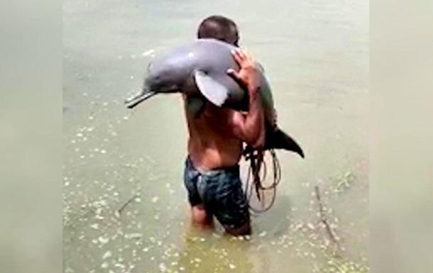 Рибалка врятував рідкісного дельфіна