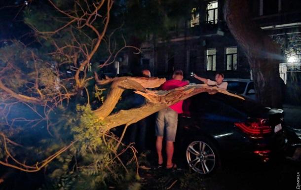 В Одессе ветер повалил десятки деревьев, пострадали два человека