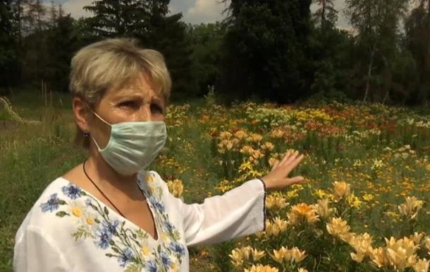В Харькове расцвела коллекция лилий
