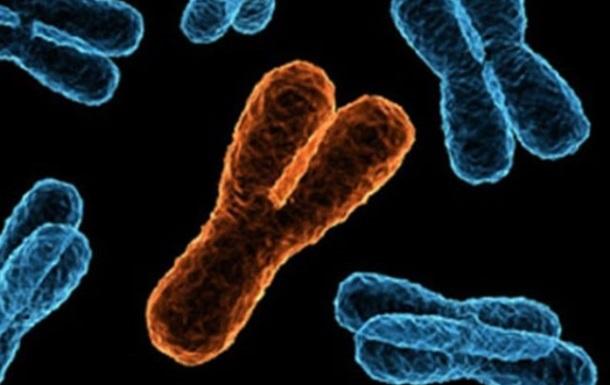Ученые впервые полностью расшифровали Х-хромосому человека