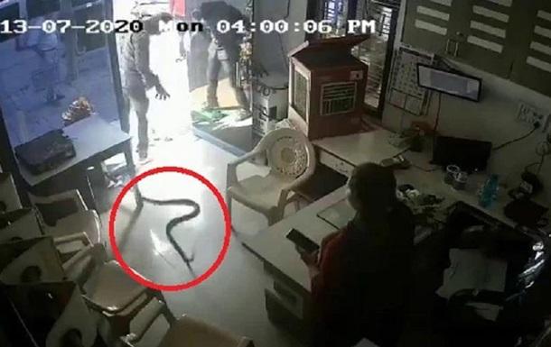 Обиженный индиец подбросил на автозаправку змей