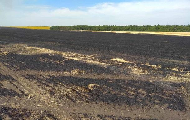 В Луганской области сгорели 40 га пшеницы