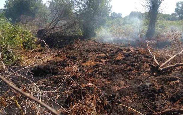 На Киевщине спасатели потушили пожар на торфянике