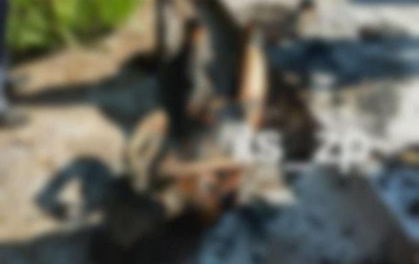Самосожжение женщины в Запорожье: стали известны подробности