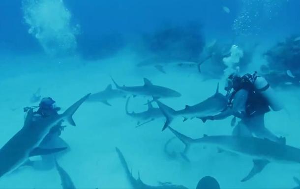 Майк Тайсон поплавав в океані з акулами