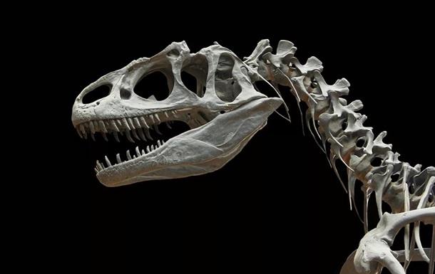 Вчені відкрили новий вид динозаврів