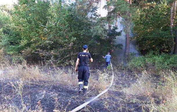 На Дніпропетровщині всю ніч боролися з лісовою пожежею