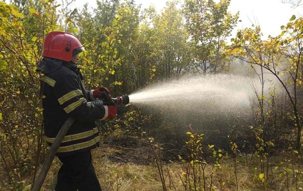 Спасатели на Луганщине тушат масштабный пожар