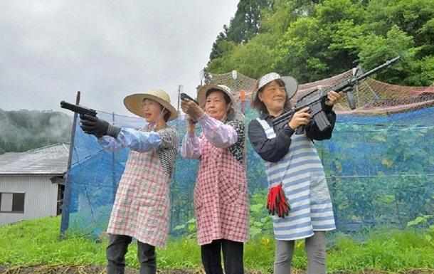 Японські пенсіонерки оголосили війну мавпам