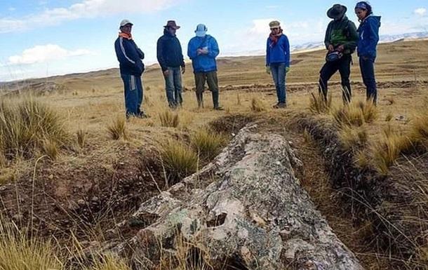 У Перу знайдено дерево віком 10 млн років