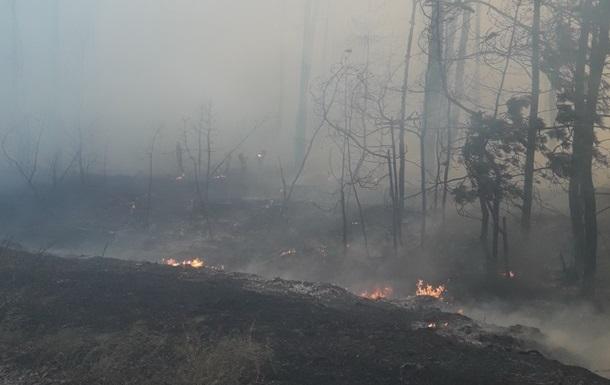 На Харьковщине продолжают тушить лесные пожары