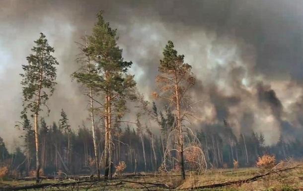 Через пожежі гинуть наші хлопці на передовій