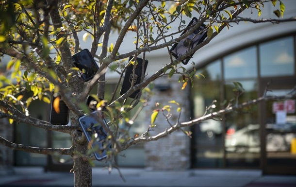 Курьеры Amazon вешают телефоны на деревья