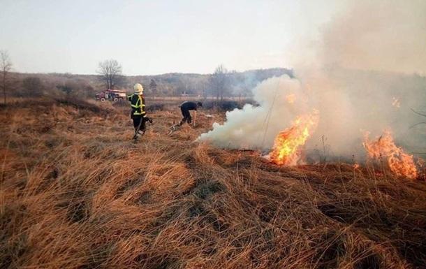 У ДСНС назвали основну причину виникнення лісових пожеж
