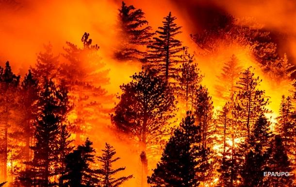 Руйнівний вогненний смерч у США зняли на відео