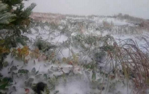 В Карпатах выпал первый снег