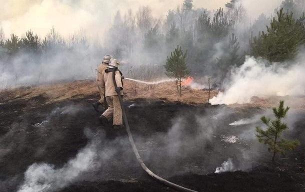На Луганщине тушат 20 гектаров леса