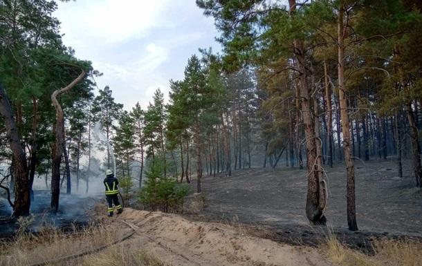 У Луганській області загасили лісову пожежу