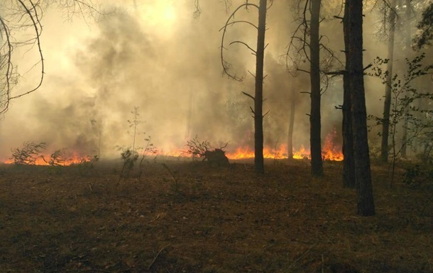 В Краматорске сгорели гектары ландшафтного парка